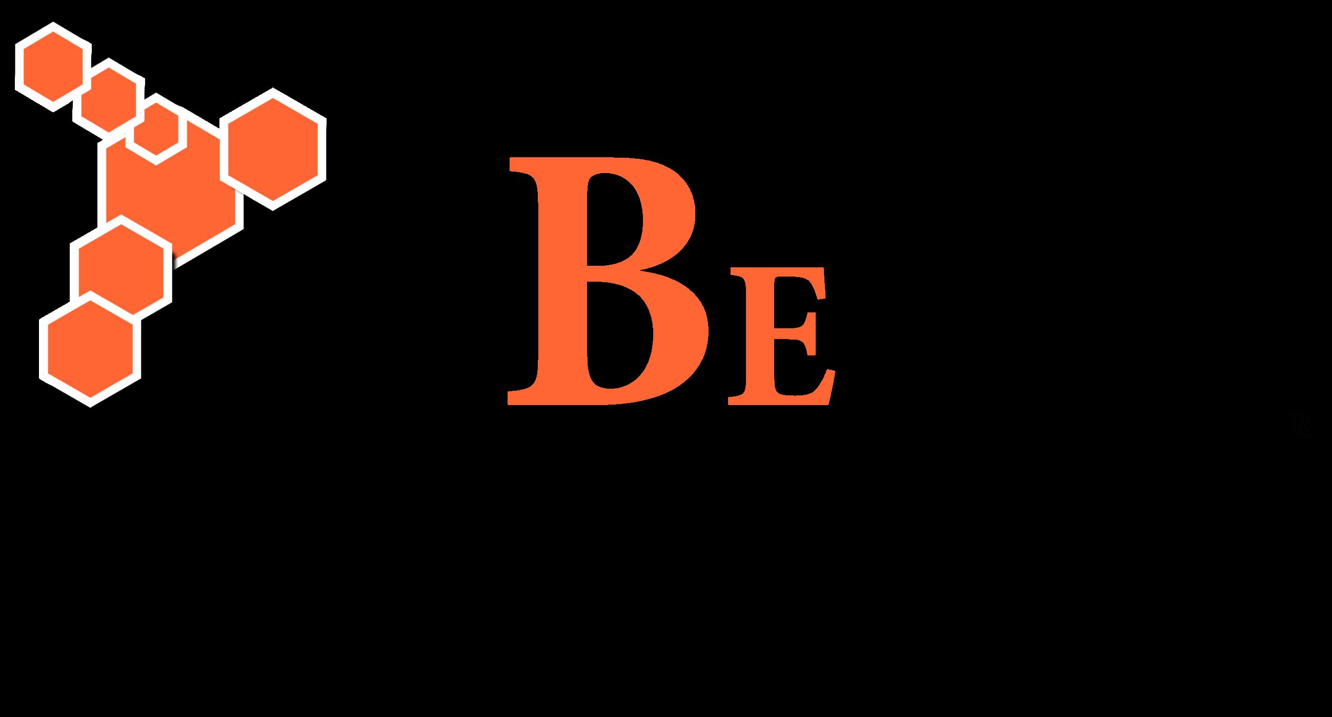BeE Dynamic Statistics